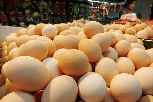10月21日全国各地鸡蛋价格